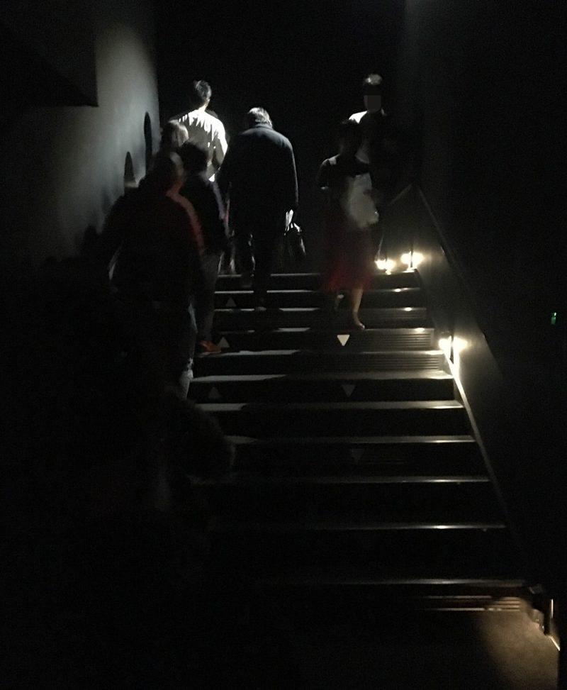 「浮遊する巣」はこの階段を上った先