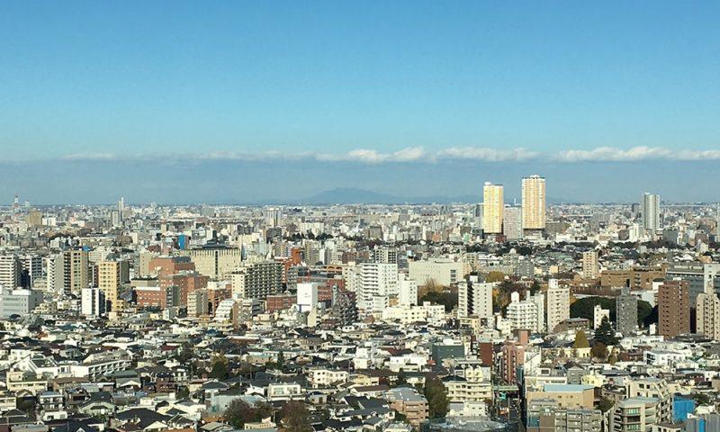 茨城方面を望む。中央に見えるのが筑波山。