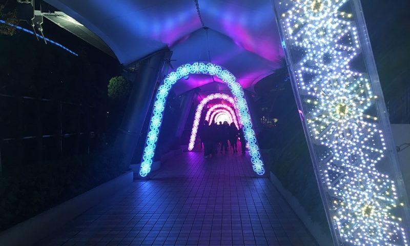 東京ドームシティのイルミネーション