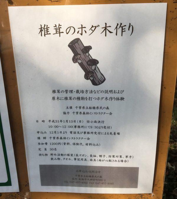 「椎茸のホダ木作り体験」開催概要