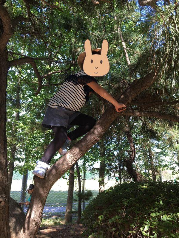 木登りをする長女