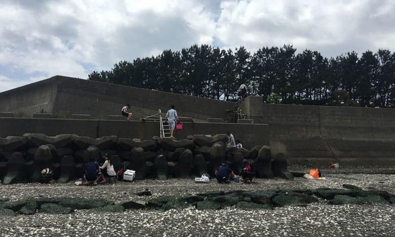 堤防先端部分に用意されているハシゴ