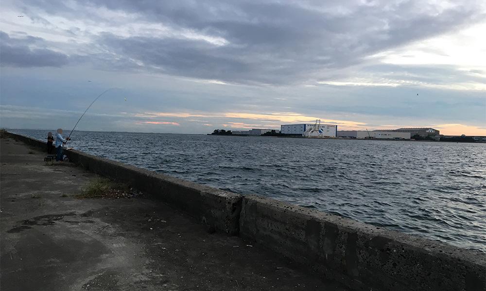市川港の岸壁はこんな感じ