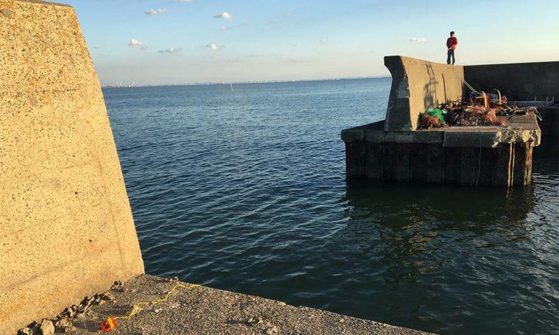 今回の釣り場は先ほどの船着き場の写真から少し歩いた、港の船の出入口付近