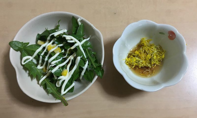たんぽぽの葉のサラダとたんぽぽの花の三杯酢