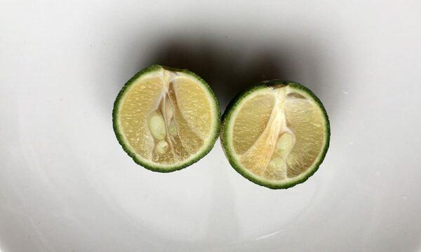 謎柑橘の断面