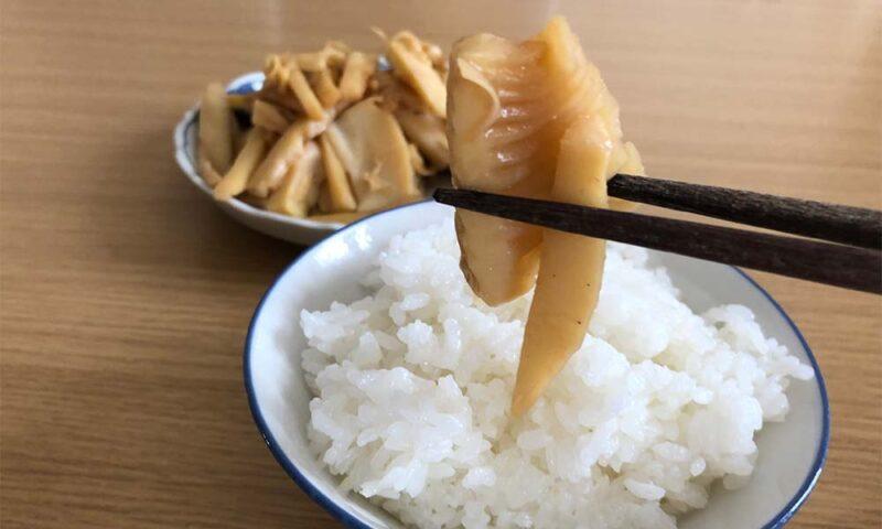 タケノコのメンマ風炒め