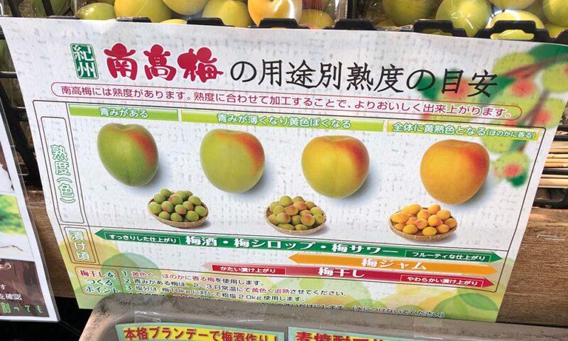 業務スーパーの売り場に貼ってあった「南高梅の用途別熟度の目安」